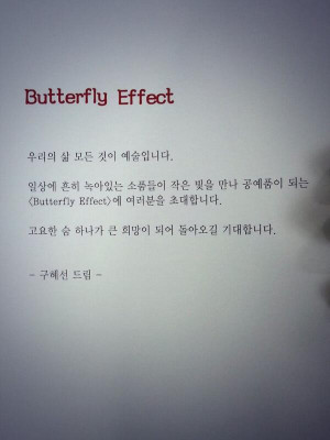 Butterfly Effect Chaos Theory Quote Sun- 'butterfly effect'