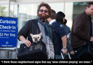 The Comical Genius Of Zach Galifianakis (20 Pics)