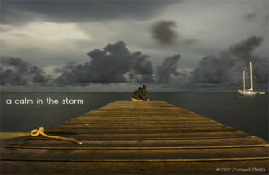calm in the storm : Issue No. 8
