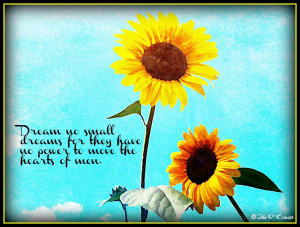 Sunflower Love Quotes I absolutely love how this
