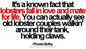 sevenknives.tumblr.com#Phoebe Buffay #Quotes