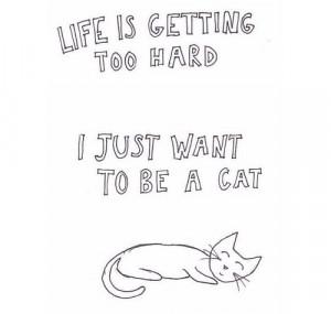 Cat Quotes Tumblr