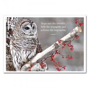 Owl on branch wildlife cover with Anon Quote: Hope sees the invisible ...