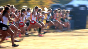 Photograph of the University High School cross-country team by Robin ...