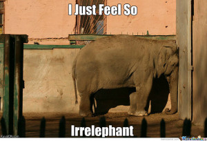 Animal Puns Are Always Funny