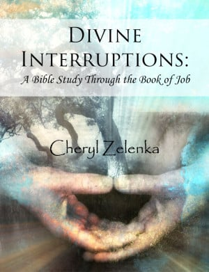 ... Review for Divine Interruptions: A Bible Study Through The Book Of Job
