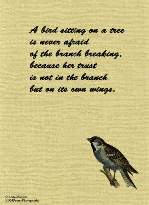 Bird Sitting On a Tree- | Inspirational Quotes | Vintage Bird ...