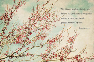 Vintage Photography Bible Quotes Photography-bible verse