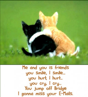 Funny Friendship Quotes and Sayings with Cute Cats Pictures for ...