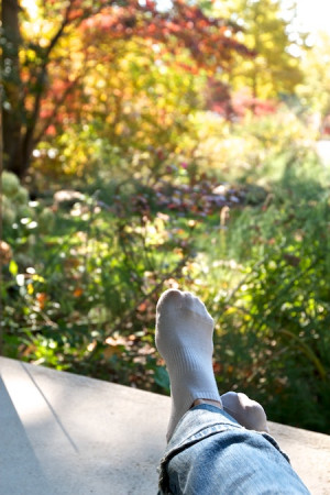 Do you have an Indian Summer in your climate? What's your favorite ...