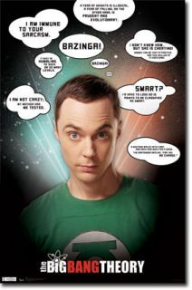 The Big Bang Theory Sheldon Cooper Quotes Jim Parsons Poster