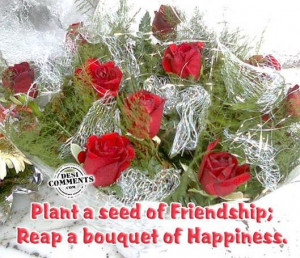 Plant a seed of friendshipreap a bouquet of happiness friendship quote