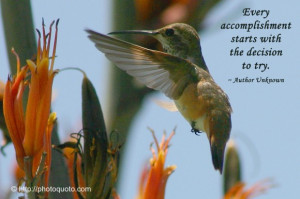 Every accomplishment starts with the decision to try. ~ Author Unknown