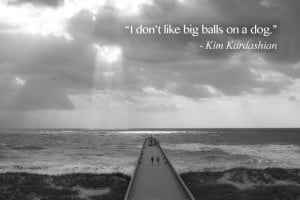 ... Quotes: Dumb stupid things Kim Kardashian said> I don't like big balls