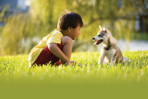 Everybody Outside! Create a Yard that Welcomes Kids, Pets and Wildlife