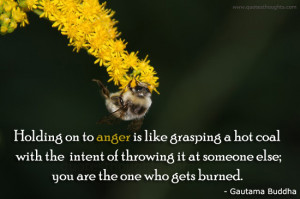 Advice Quotes-Thoughts-Gautama Buddha-Anger-Coal-Best Quotes