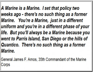 Letter Written by a Mother of a Marine to My Marine Group