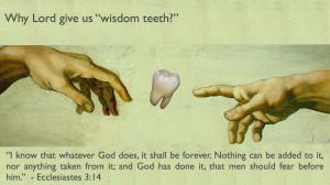 The wisdom behind wisdom teeth