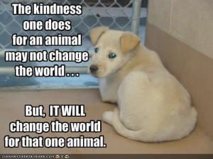 Love your animals