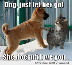let her go dog cat animal love lolcat funny pics pictures pic picture ...