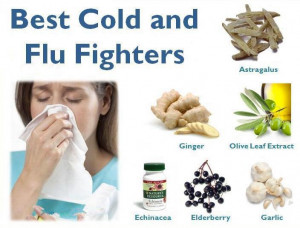 Most important foods to fight against the common cold