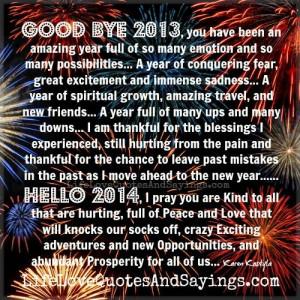 Good Bye 2013..