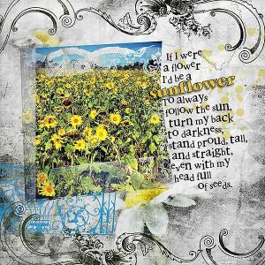 Sunflower quote