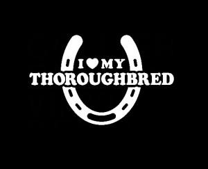 Love My Thoroughbred Decal Sticker – http://customstickershop.us ...