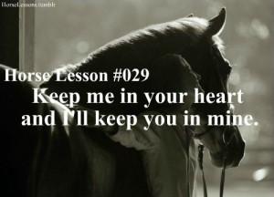 Horse lesson+boy lesson. Perfect