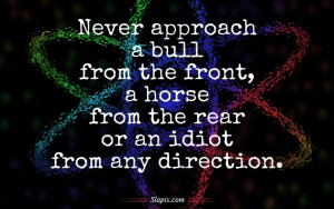 Never approach an idiot from any direction | Quotes on Slapix.com