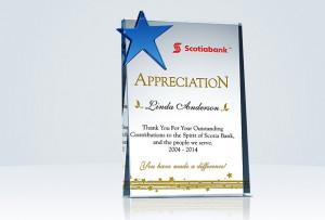 Home » Thank You & Appreciation » Star Employee Appreciation Gifts