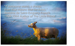 Big Sheep + An illustrated sheep quote . . .
