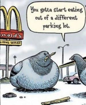 Funny McDonald's Pigeon Cartoon.