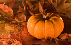 ... quiet-joy-ralph-h-blum_10-beautiful-thanksgiving-quotes.jpg