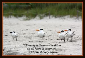 topics: quote beach diversity vanhookc naples florida picnik