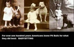 pitbull sayings | pitbulls # sayings # quotes