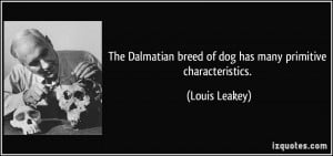 The Dalmatian breed of dog has many primitive characteristics. - Louis ...