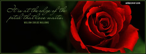 Red Rose & Love Quote Facebook Covers
