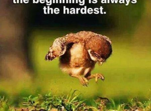 funny-inspirational-quotes-about-not-giving-up-7-450x330.jpg