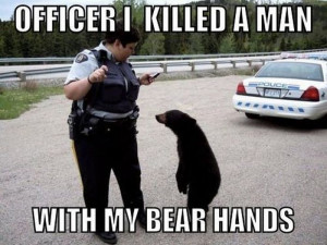 ... memes, animal pictures with captions, funny memes, funny animals
