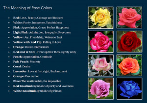The Meaning Behind a Flower's Color
