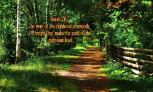 ... bible verses, path, nature, bible, holy spirit, walking, forest