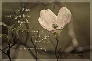 Family Estrangement Quotes Estranged Sister Quotes 1