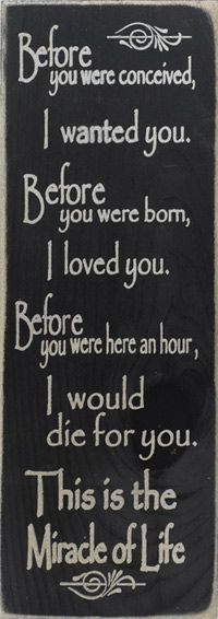 Pregnancy & Mother Quotes, Sayings and Funnies
