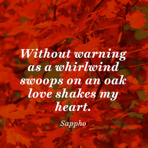 Warning Love Quotes