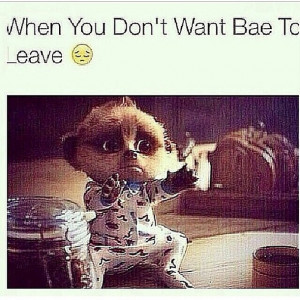 BAE When Leaves Quotes