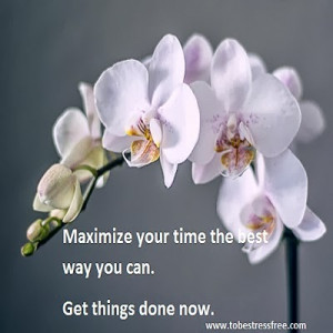 motivational quotes on making the most of time