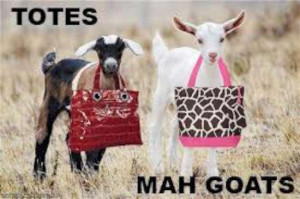 Oh these funny Goats! (14 Pics)