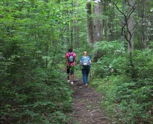 hiking-shaded-trail.jpg
