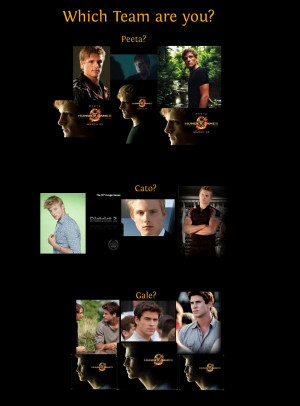 Cato Hunger Games Quotes Which hunger games team are